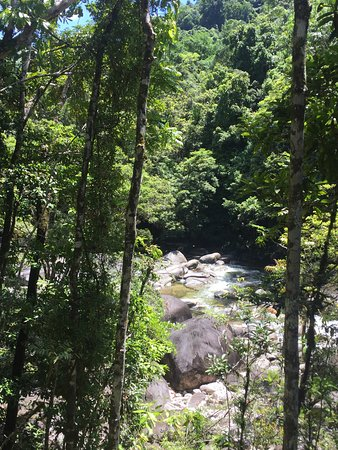 Daintree Region, Australien: Amazing place to visit