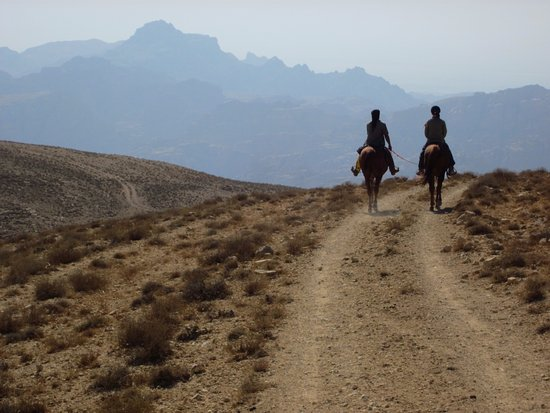 Petra Bed and Breakfast : Horse riding Petra mountains