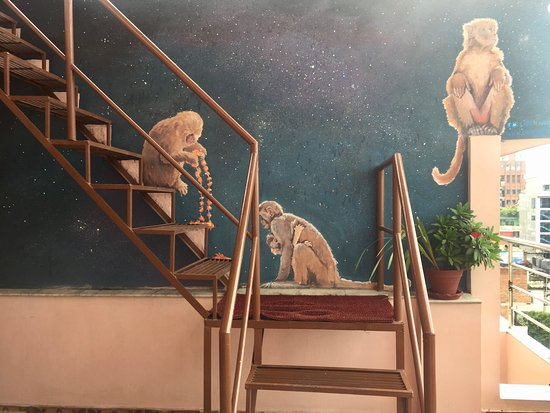 Backyard Hotel: Enjoying a piece of fine wall art while sipping local cuppa