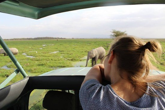 ‪African Memorable Safaris‬