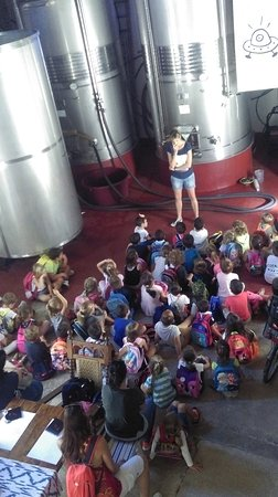 Binissalem, İspanya: Visita de la Escuela de Primaria / Primary School visit