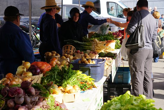 Fredericton Boyce Farmers Market: Lovely fresh produce, at Christmas time they sell trees here.