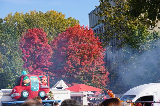 Fredericton Boyce Farmers Market: Lots of fall colour and the smell of treats in the air.