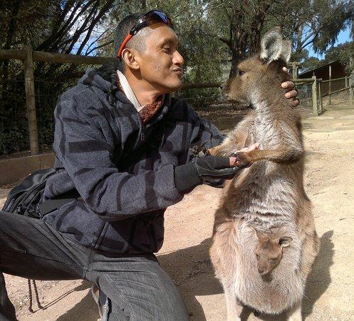 Ballarat, Australie : 2012-08-27-172 - Copy(1)_large.jpg
