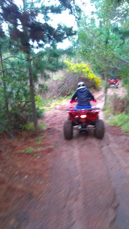Wilderness, Νότια Αφρική: Quad biking bush trail