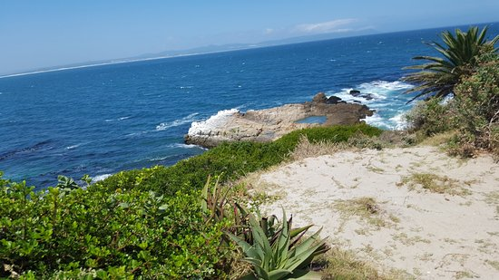 Savannah Cafe : Why you have to visit us and enjoy the beauty of Hermanus