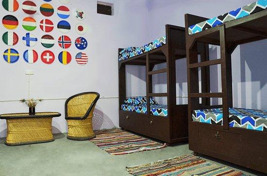 Delhi, แคนาดา: The 8 bed mixed dorm