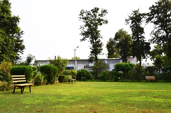 Delhi, แคนาดา: View from the badminton court