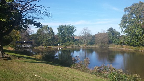 Chestertown, MD: Pond on the grounds of the hotel