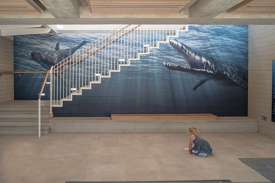 Kimmeridge, UK: This is the foyer of the Etches Collection building, setting the scene.