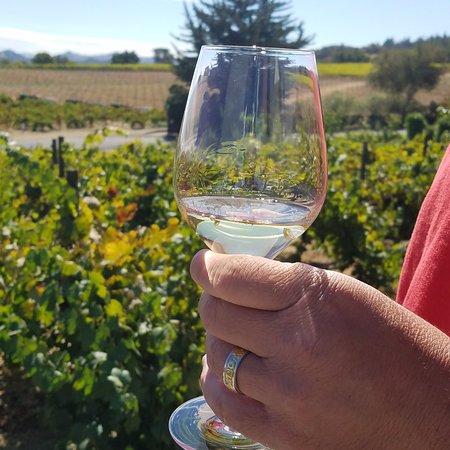 Geyserville, Californie : Sampling the grape