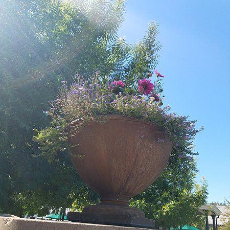 Geyserville, CA: I want this flower pot - gorgeous landscaping!