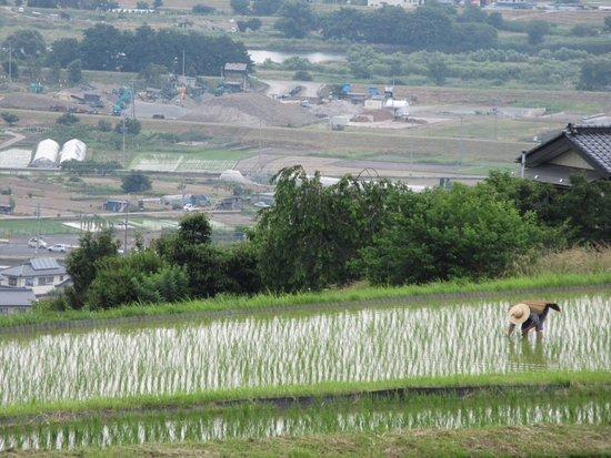 Chikuma, Japonya: 善光寺平が広がる