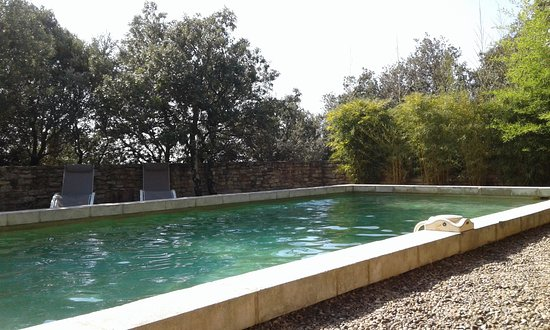 piscine photo de bacchus en luberon gordes tripadvisor. Black Bedroom Furniture Sets. Home Design Ideas