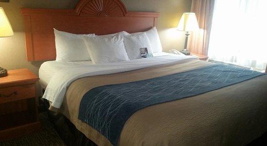 Comfort Inn Kalamazoo: Keng bedded guest room