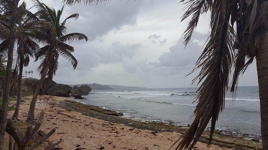 Bathsheba, Barbados: Такой вот парадайз