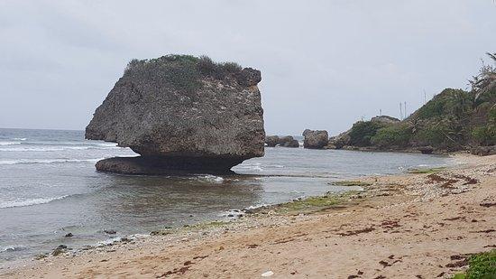 Bathsheba, Barbados: Камень омывается морем и становится грибом на ножке