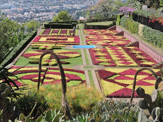 Madeira Botanical Garden: The famous garden collage