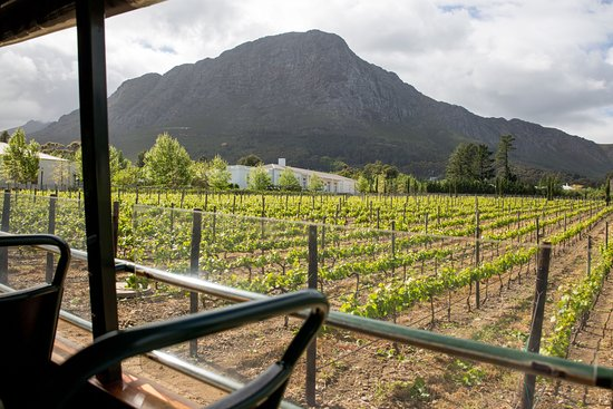 Franschhoek, África do Sul: A photo taken from the wine tram, which is a bus between certain stops.