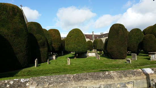 Painswick, UK: What topiary!