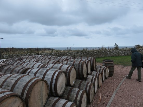 Kingsbarns, UK: These casks are purchased after one use at a bourbon distillery in Kentucky USA.