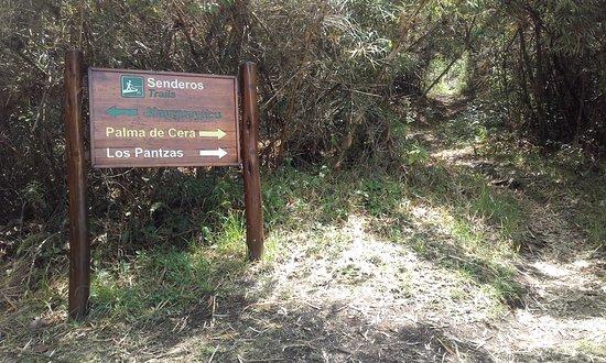 Pasochoa Forest Reserve: Sendero señalizado