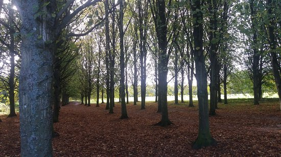 Swindon, UK: Coate's beautiful autumn colours.