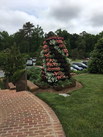 Long Neck, DE: As you walk up from the parking lot. Gorgeous tower of flowers!