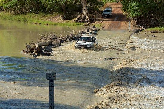 Cahills crossing traversée d'une voiture et d'un crocodile