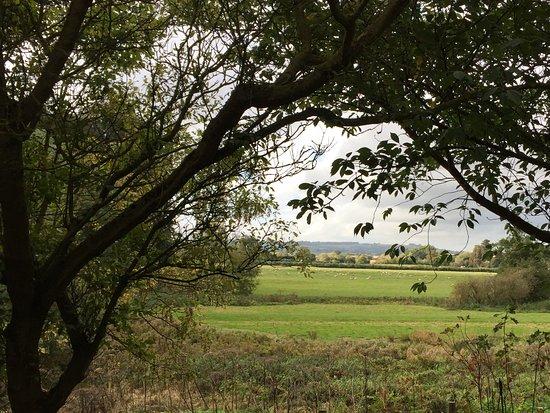 Alderminster, UK: The grounds