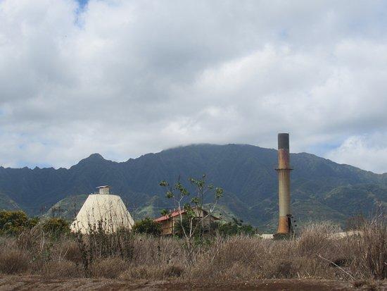 Waialua Foto