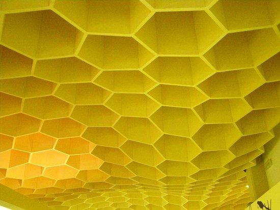 Pastida, Yunanistan: 3D ceiling