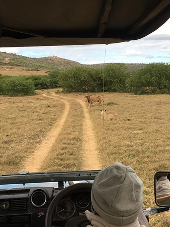 Amakhala Safari Lodge: photo3.jpg
