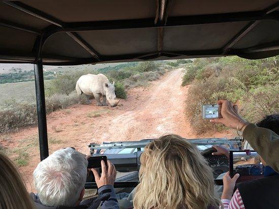 Amakhala Safari Lodge: photo4.jpg