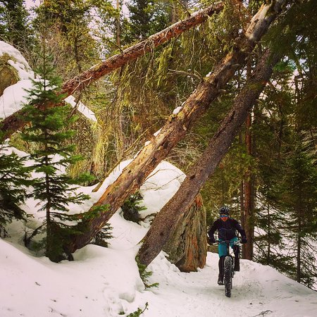 Private Winter Fat Biking Tours, get out with the most experienced outfit in Fort Collins!