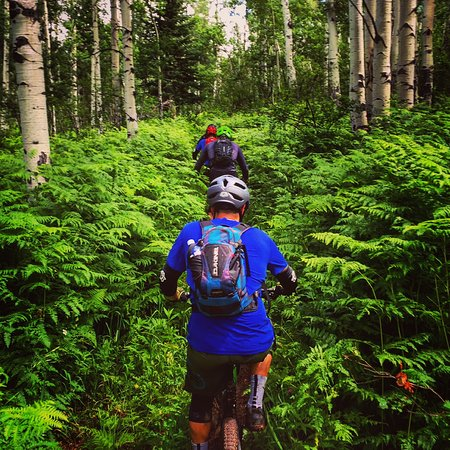 Fort Collins, CO: Ride where the single track is single, on a custom mountain bike tour with FRRG!