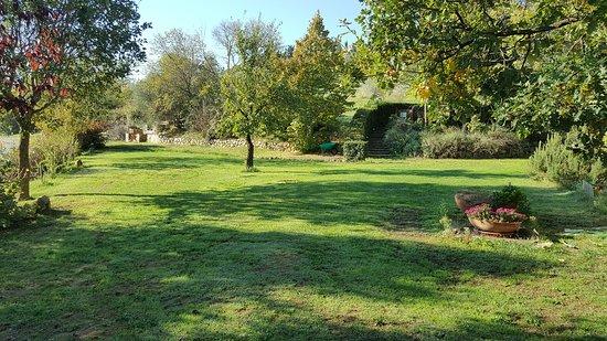 Contignano, Italia: La Montalla Agriturismo