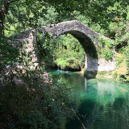 Montauroux, France: pont