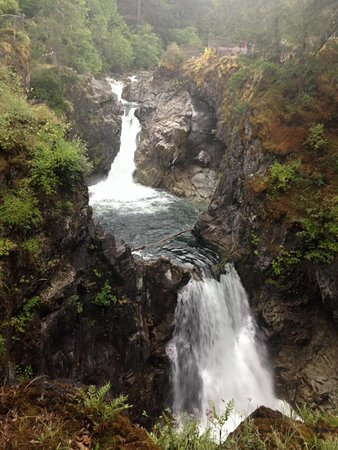 Parksville, Canadá: View from one of the platforms at Little Qualicum Falls Provincial Park