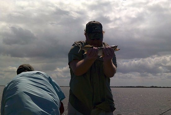 Chuburna, Meksyk: Rich's fish