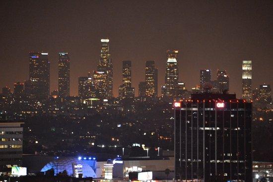 Hollywood Hills Hotel: 11th