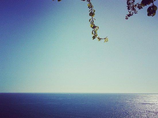Lachania, Yunanistan: IMG_20161010_085751_large.jpg