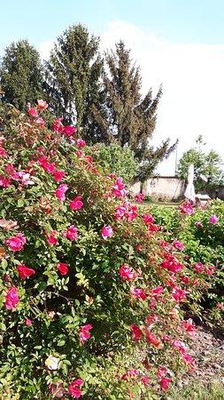 Province of Pavia, Italia: giardino