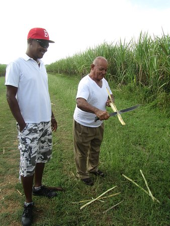 Bayahibe, جمهورية الدومينيكان: Bon et le papa de SCHUMI
