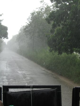 Bayahibe, جمهورية الدومينيكان: Pluie tropicale