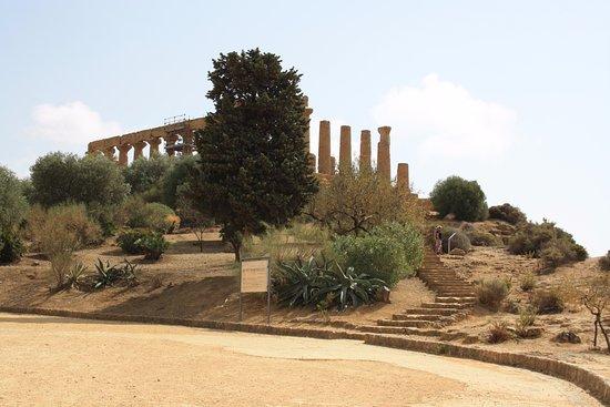 Valley of the Temples (Valle dei Templi): Tempio di Giunone (Hera)