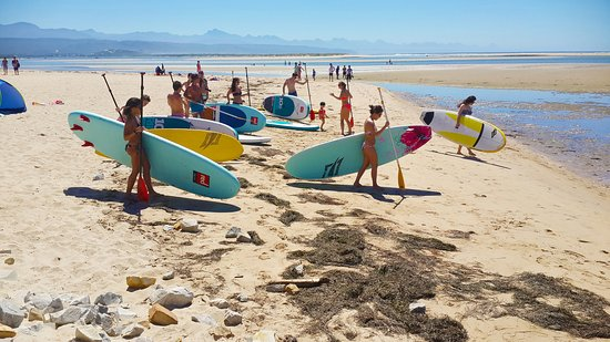 Plettenberg Bay, África do Sul: We carry the latest in rigid and inflatable SUPs to suit all sizes and needs.