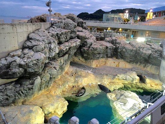 Oita, Japon : photo9.jpg