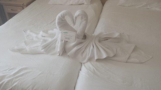 Hotel Aqua: 20161005_163520_large.jpg