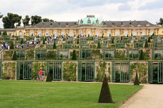 Sanssouci Palace: Hoog gelegen met uizicht op het park.